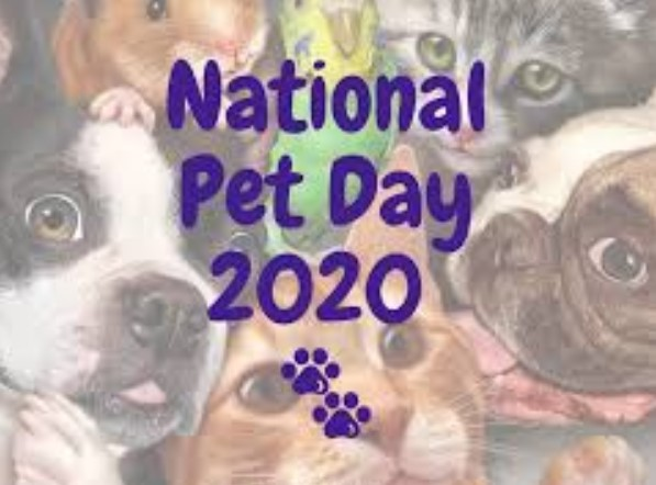 National Pet Day 2020